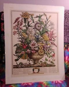 Vtg Robert Furber Henry Fletcher AUTUMN Etching Print Matted No Frame 22x28