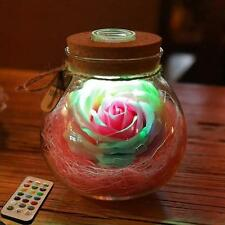 Rose Light Bottle Creative Romantic RGB LED Dimmer Light 16 Colors NEW