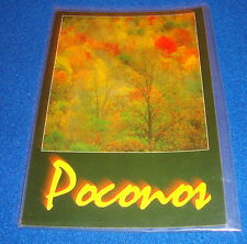 Vintage Poconos Pennsylvania Postcard Unused Free Shipping