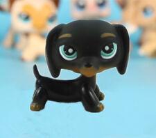 #325 Littlest Pet Shop Toys  Black Dachshund Dog Chien Teckel Puppy Blue LPS