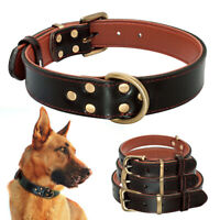 Padded Genuine Leather Dog Collar Heavy Duty Pet Collars for Puppy Medium Dogs