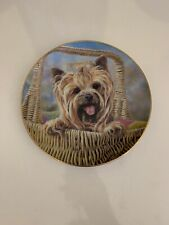 Danbury Mint Carry Me Home by Paul Doyle Yorkshire Terriers Plate