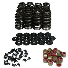 Howards Engine Valve Spring Kit 98113-K1;