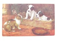 Antique colour printed postcard 2 puppies & rabbits Tucks Among The bunnies