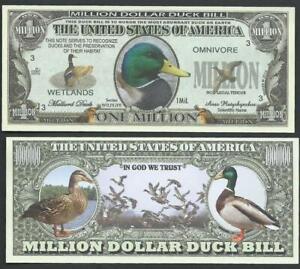 MALLARD DUCK 🦆🦆 Fantasy Note 🦆 Multiple ducks 🦆 BUY MORE 💲 SAVE MORE
