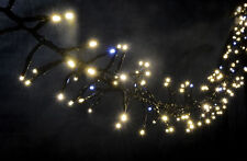 LYYT 240 LED STATIC TWINKLE CLUSTER LIGHT WARM WHITE CHRISTMAS LIGHTS