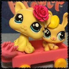 LITTLEST PET SHOP RARE YELLOW BABY KITTEN #1779 WITH ACCESSORIES DAMAGED