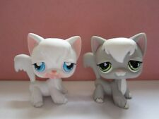 AUTHENTIC ORIGINAL LOT 2 LITTLEST PETSHOP LPS 09 954 CHAT CAT ANGORA