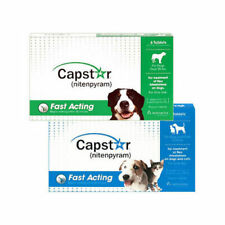 Capstar Flea Tablets for Dogs & Cats.