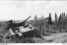 German Army Photo USA Sherman Tank Italy 1944 World War 2 Reprint Photo 6x4 Inch