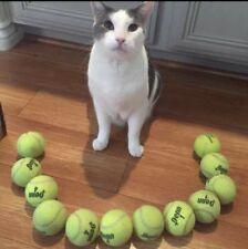 25 Used Tennis Balls Penn Wilson Dunlop