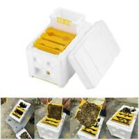 Auto Honey Beehive Frame Beekeeping Kit Bee Hive King Box Garden Pollination Box