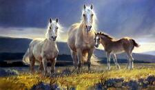 "Nancy Glazier ""Golden Glory""  Horses and Col Print Signed and Numbered Art Print"