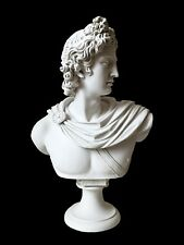 Apollo Belvedere White Marble Bust Statue (Large) Made in Europe (21in/53cm)