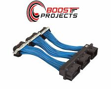 AEM Ford & Lincoln ECU Patch / Extension Harness 30-2993