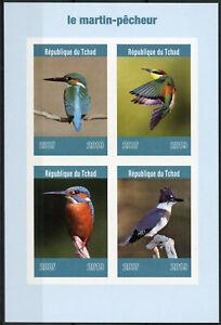 Chad 2019 MNH Kingfishers Kingfisher IMPF 4v M/S Martin-Pecheur Birds Stamps