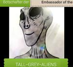 Botschafter der Tall-Grey-Aliens