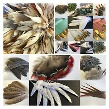 35 Types Feathers Peacock Rooster Goose Guinea Duck Pheasant DIY Craft Wedding