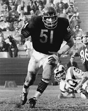 Chicago Bears DICK BUTKUS Glossy 8x10 Photo NFL Football Print Poster