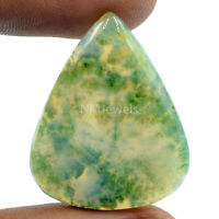 Cts. 33.60 Natural Landscape Moss Agate Cab Pear Cabochon Loose Gemstone