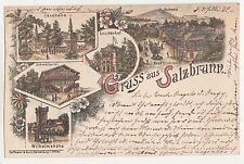 Litho Ak Gruss aus Salzbrunn Schlesien Szczawno-Zdrój 1895 Mehrbild ! (A1623