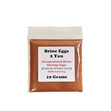 10 Grams  Decapsulated Brine Shrimp Eggs (NON-HATCHING) Premium Artemia Cysts