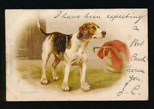 Dogs FOXHOUND Tuck Write Away #1599 Chromo Litho u/b PPC Used 1904