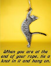 METAL MAGNET Cat At End Of Rope Tie Knot Hang On Family Friend MAGNET