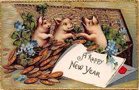 LITTLE PIGS~GOLD COINS~SHAMROCKS~FLOWERS GILT EMBOSSED NEW YEAR POSTCARD 1910
