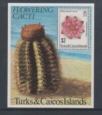 Turks & Caicos - 1981, Flowering Cacti, Cactus sheet - MNH - SG MS639