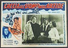 Caccia all'uomo nell'Artide - Thurston - Locandina Film Poster Plakat (Y-4505+