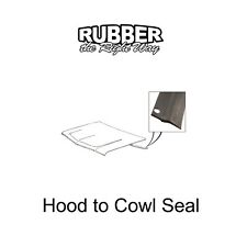 1965 1966 1967 1968 Ford Galaxie & LTD Hood to Cowl Seal