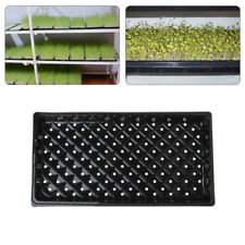 Seedling Sprout Root Tray Plastic Holes Nursery Flower Vegetables Planter Box