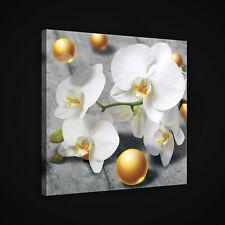 CANVAS Wandbild Leinwandbild Bild ORCHIDEE BLUMEN KUGELN KUNST HOLZ 3FX2421O5