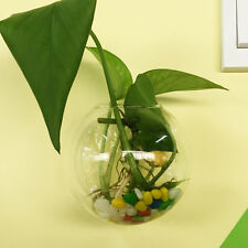 Plant Flower Hanging Container Terrarium Glass Ball Vase Bottle Fish On The Wall
