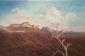 "Australian Oil Painting. The Grampians 20 x 30"" by Debra Lohrere"