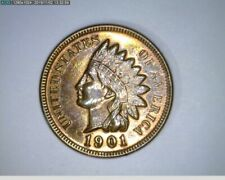 1901 Indian Cent Penny ( 66-317 10m/o )