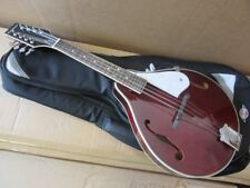 F HOLE ACOUSTIC MANDOLIN,IN WINE RED WITH HIGH QUALITY GIG BAG rrp about £180.00