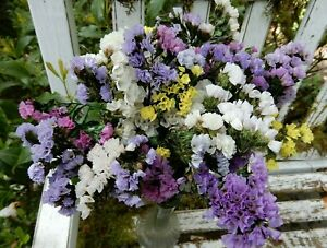 Dried Statice Sinuata Purple Lavender Pink White Mix 20 Stems Wildflower Wedding