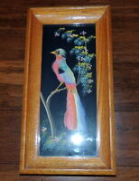 VTG  Bird Picture Genuine Feathers Old Mexico Wood Framed Ornithology
