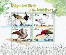 Maldivas 2006 estampillada sin montar o nunca montada migrados aves II 4v m/s porrón moñudo charrán Petrel Ibis sellos