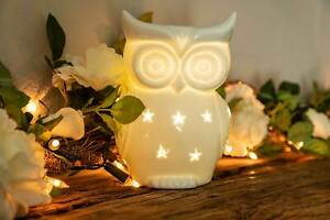OWLCHEMY Wax Burner - SNOWY OWL Electric wax warmer with light & dimmer