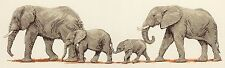 ANCHOR COUNTED CROSS STITCH KIT ELEPHANT STROLL NEW