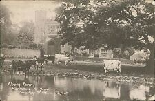 Somerset postcard Abbey Farm Montacute  nr Yeovil St IveL Butter Postcard QS.235