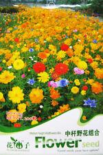 Original Package 200 Medium Height Wildflowers Mix Seed Flower Garden Plant K003