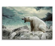 120x80cm Leinwandbild auf Keilrahmen Eisbär auf Eis bei Jagd