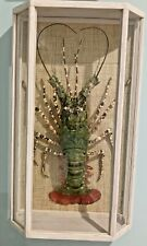 Shadow Frame Mounted Lobster Taxidermy Real Lobster Wall Art Shell