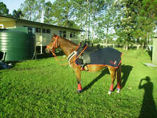 Horse Exercise or Quarter sheet FREE EMBROIDERY Choose your size & Binding NAVY