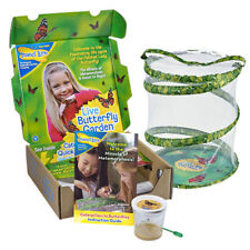 Insect Lore Butterfly Live Garden Kit
