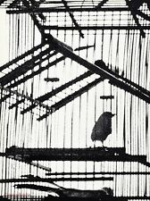 1967 Vintage AVIARY BIRDS Cage Parakeet Pet Photo Gravure Art SAM HASKINS 16x20